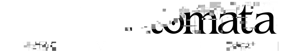 NieR: Automata | Become as Gods Edition Logo
